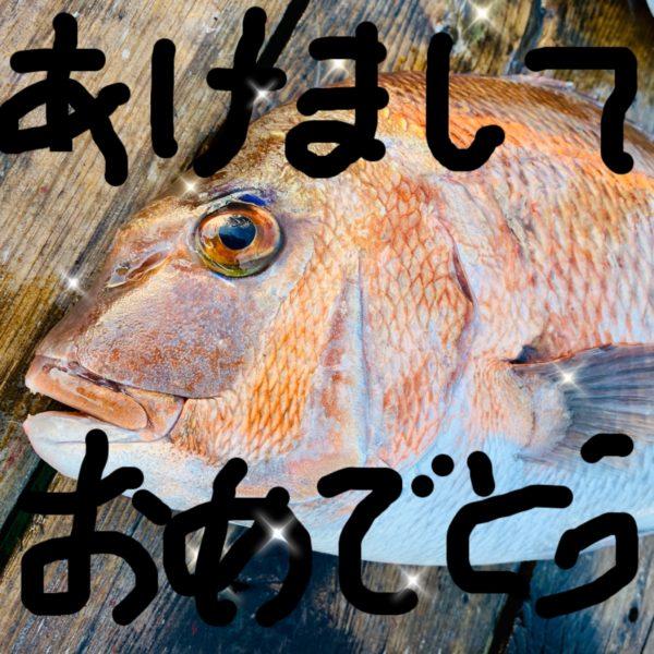 1月2日の釣果